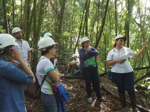 New CTCN/UNIDO Call for Proposals: Development of an Agroforestry Policy for Belize